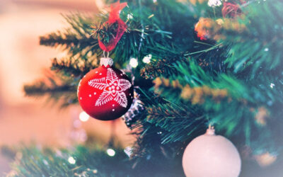 El abeto navideño